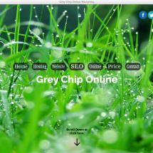 Grey Chip